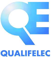 http://www.habitatdurable-franchecomte.com/wp-content/uploads/2014/11/qualifelec-rge-e1417517937403.jpg